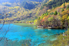 Five Flower Lake,Jiuzhaigou,north of Sichuan province, China. Jiuzhaigou Valley Scenic and Historic Interest Area and World Heritage Site Royalty Free Stock Image