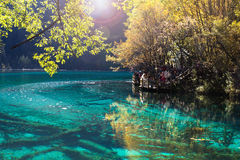 Five Flower Lake is lake in Jiuzhaigou Stock Image