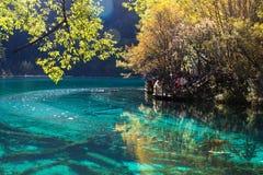Five Flower Lake is lake in Jiuzhaigou Stock Photos