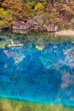 Five Flower Lake is lake in Jiuzhaigou Royalty Free Stock Photography