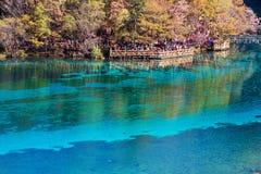 Five Flower Lake is lake in Jiuzhaigou Stock Images