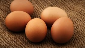 Five fresh brown chicken eggs rotating on burlap background stock footage