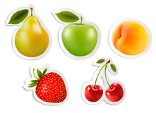 Five fruit stickers. Vector. Royalty Free Stock Image