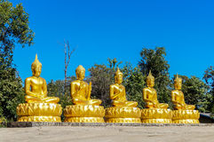 Five golden Buddhas with different mudras in a row Royalty Free Stock Image