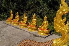 Five golden Buddhas with different mudras in a row Stock Photo