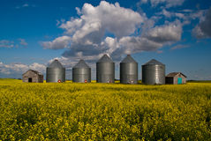 Five grain bins Royalty Free Stock Photos