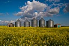 Five grain bins Royalty Free Stock Photos