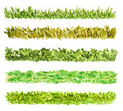 Five Grass Border Pieces, Watercolor, Isolated. Five Grass Border Pieces Watercolor Hand Drawn and Painted, Isolated on White Background Royalty Free Stock Photography