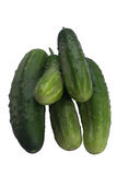 Five green cucumbers lie on each other. Five green cucumbers on a white background Stock Photo