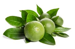 Five green limes with leaves Stock Images