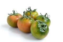 Five Green Tomatoes. Five green and somewhat red tomatoes isolated over a white background Royalty Free Stock Photos