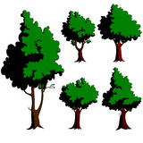 Five green trees Royalty Free Stock Photo