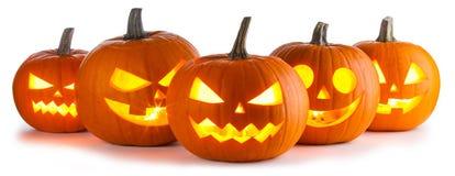 Halloween Pumpkins on white Royalty Free Stock Photo