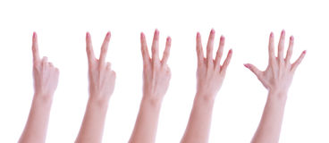 Five hands Royalty Free Stock Images