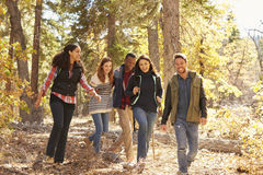 Five happy friends enjoy a hike in a forest, California, USA Stock Images