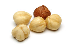 Five Hazelnut Royalty Free Stock Photos
