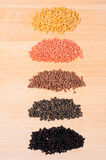 Five heaps with lentils Royalty Free Stock Image