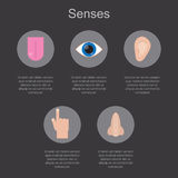 Five human senses on a dark background with space for your text. Stock Image