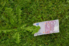 Five hundred 500 Euro banknote money bill on fresh green grass Royalty Free Stock Image
