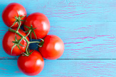 Five Hydroponic tomatoes on stem with copy space Royalty Free Stock Photo