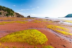 Low Tide in the Bay of Fundy reveals ocean floor. Five Islands Provincial Park: View of the Bay of Fundy at low tide Stock Image