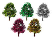 Five isolated colored trees on white Royalty Free Stock Images