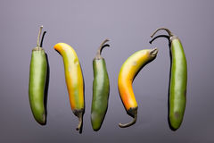 Five Jalapeno pepers laid out. Royalty Free Stock Image