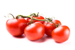 Five juicy red shiny tomatoes. On a green stem laying on a white background Royalty Free Stock Photography