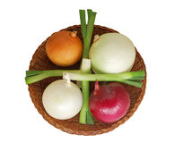 Five Kinds Of Onions Stock Photography