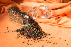 Five kinds of peppercorns mixed Stock Images