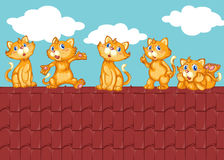 Five kittens on the red roof Stock Photo