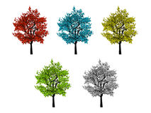 Five leafy colored trees isolated on white Royalty Free Stock Photo