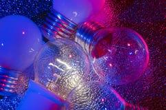 Five Light Bulb. Five bulbs on a metallic background Stock Image