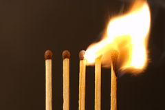 Five matches - fire. Five matches on dark background - ignition (setmatches stock photos