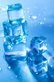 Five melting ice cubes. Five Beautiful blue melting ice cubes isolated Royalty Free Stock Photo