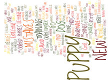 Five Mistakes New Puppy Owners Make Text Background Word Cloud Concept Stock Photography