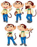 Five monkeys wearing blue jeans Stock Photo