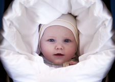 Five month old baby boy Royalty Free Stock Photos