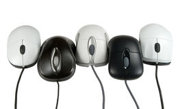 Five mouses. Isolated on white, clipping path included Royalty Free Stock Images
