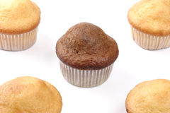 Five muffins Stock Photos