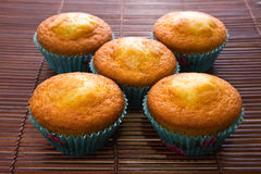 Five muffins Royalty Free Stock Images
