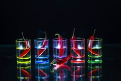 Five multicolored shot glasses full of drink and with the red ch. Ili peppers lying inside them and one pepper in front of them on black background. Conceptual stock photography