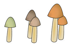Five mushrooms with small cap Stock Photography