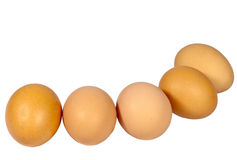 Five Newly Laid Brown Eggs in a Row Royalty Free Stock Images