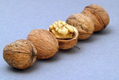 Five nuts Royalty Free Stock Images