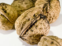 Five nuts. Close up of five nuts Royalty Free Stock Photos