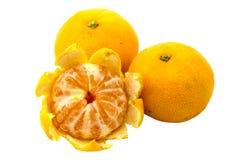 Five orange mandarin isolated Stock Photography