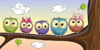 Five Owls Royalty Free Stock Photos