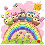 Five Owls on the rainbow. Five Cute Owls is sitting on a rainbow Stock Images