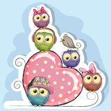 Five Owls is sitting on a heart Stock Images